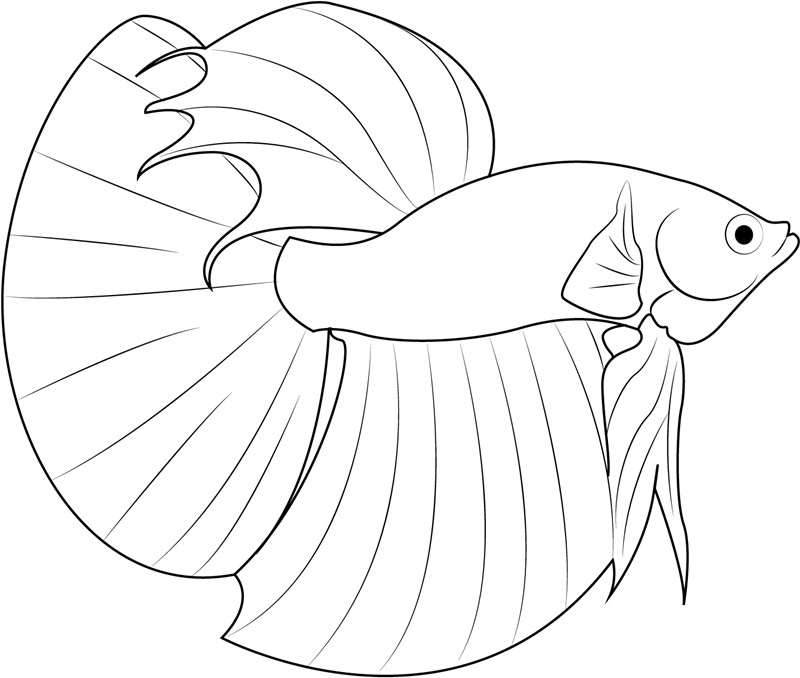 Cowfish Coloring Pages